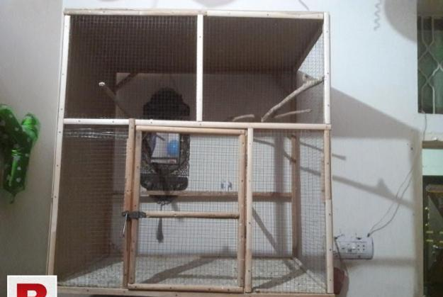 Wooden Cage For Sale 0
