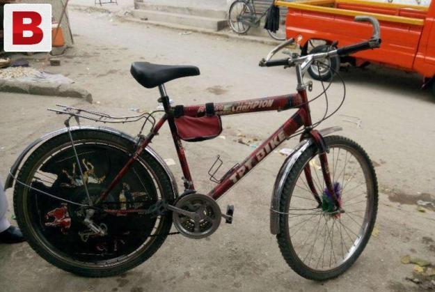 Champion mountain bike