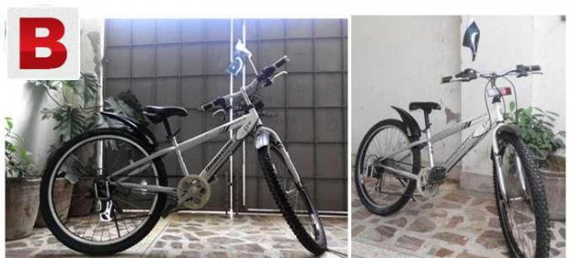 Original gear bicyle of bridge stone