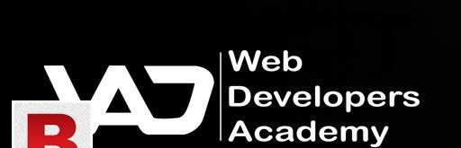 Web developers academy:- institute & software house.