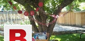 Celebrate your picnic with streamline management services