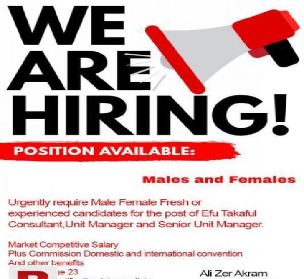 Efu hiring