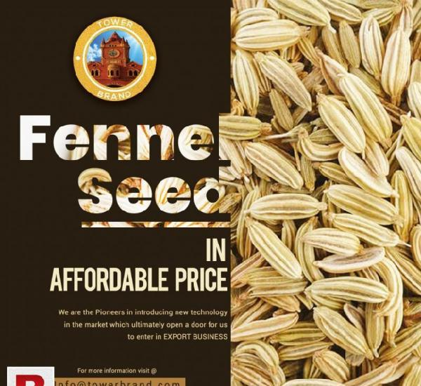 Fennel seed exporting services pakistan
