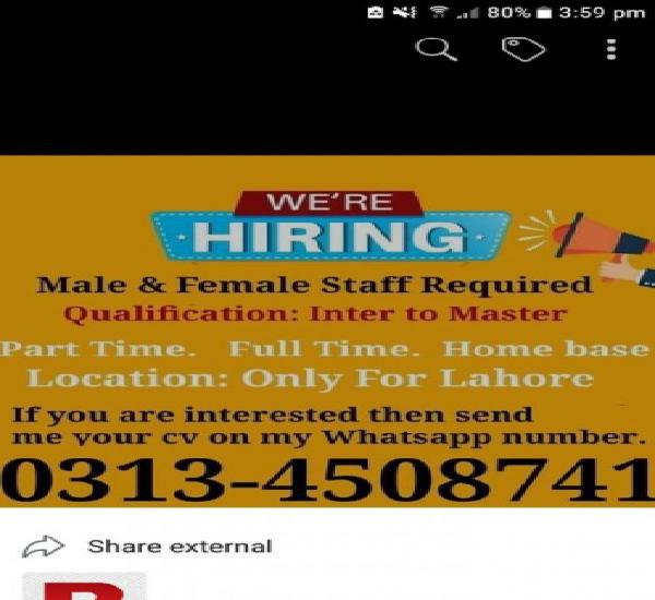 Urgent required staff male and female