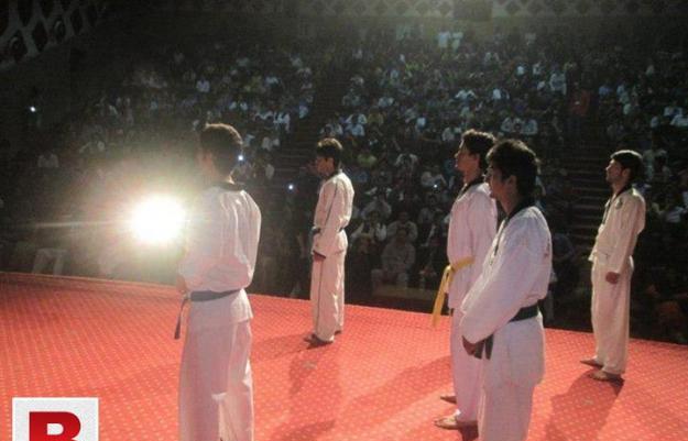 Taekwondo academy, home classes and sports tescher bta