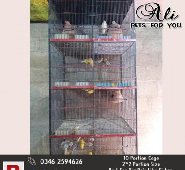 10 portion cage big size