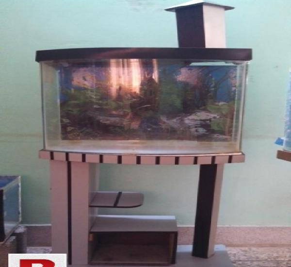 2 feet aquarium concave glass