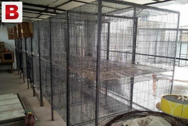 5 galvanized folding cages