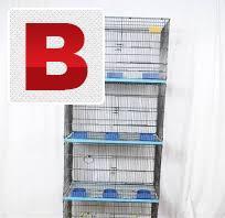 8 portion master folding cage