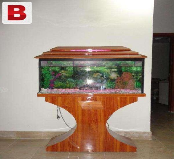 Aquarium in low price