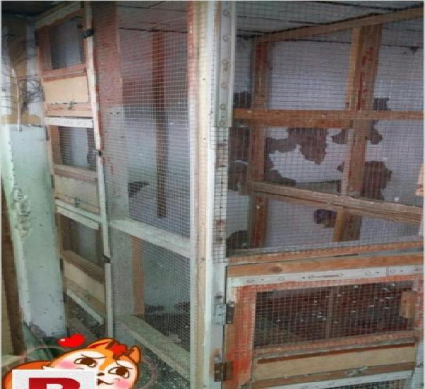 Big wooden corner cage