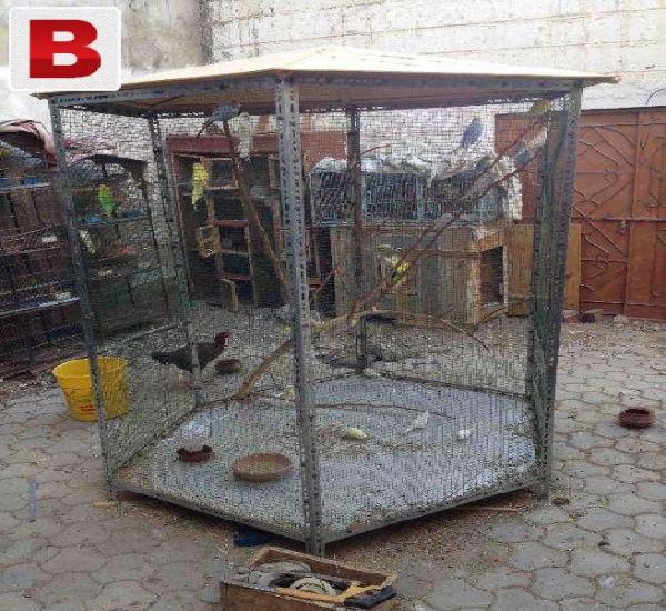 Bird cage flight cage