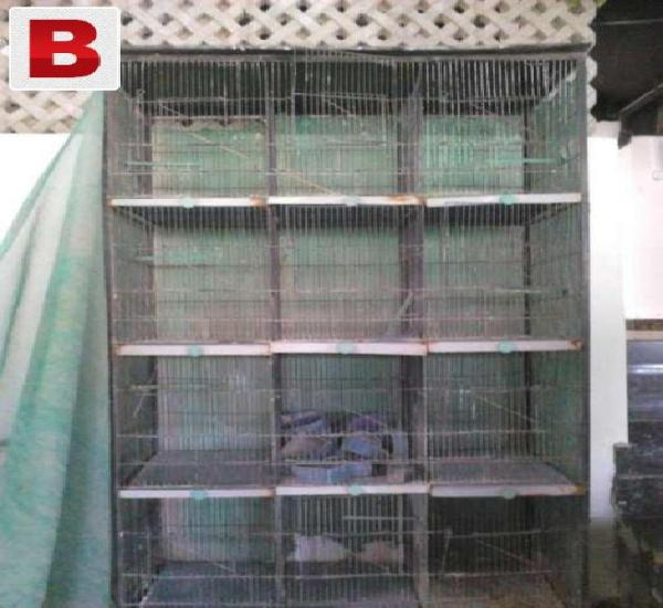Birds 12 portion cage