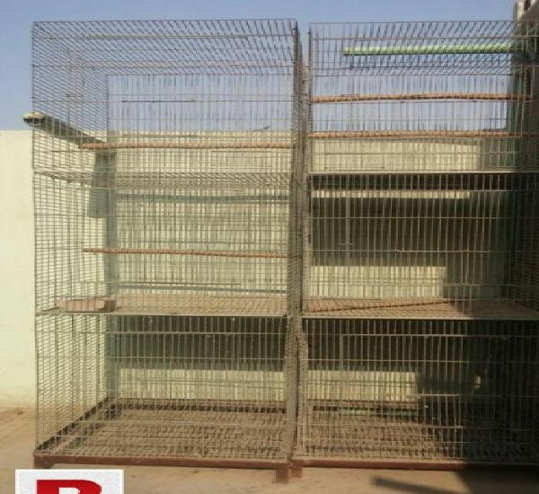 Birds cage special manufacturing, ideal for new setup