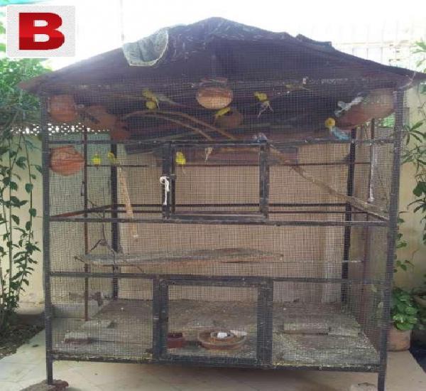 Birds cage 4sale