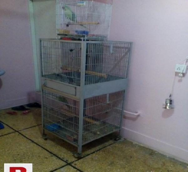 Cage and boxes for sale