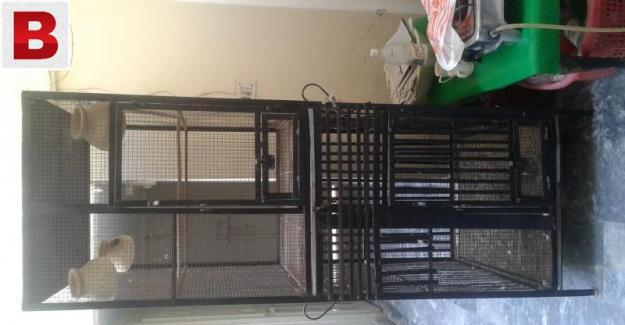 Cage (iron) in cheep price