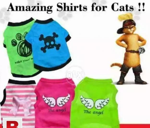 Cat shirts available