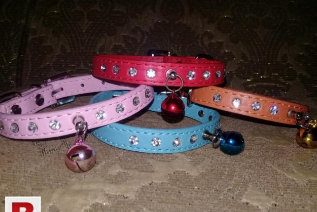 Cat and Puppy fashion Collars.
