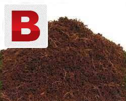 Coco peat for animal bedding and for rotten soil