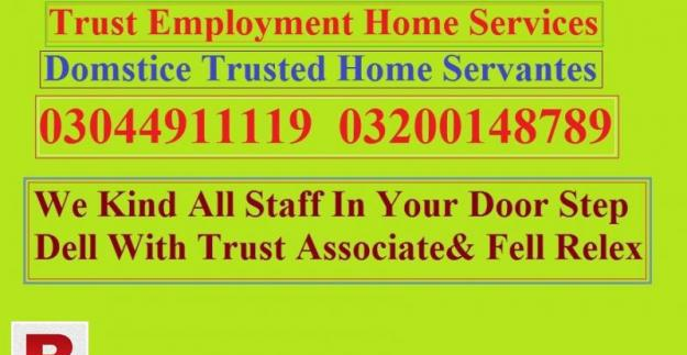 Domestic babysiter maid services