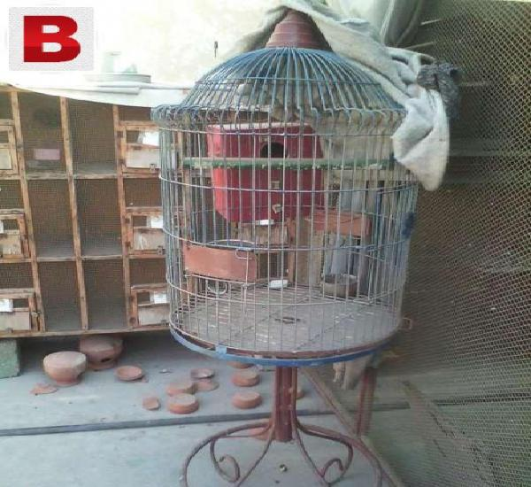 Fancy cage in good condition