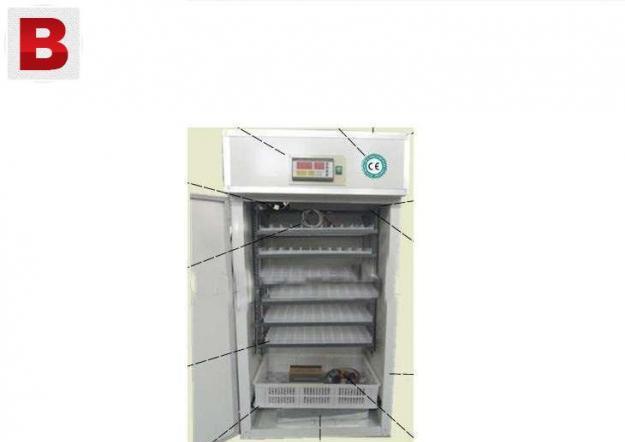 Fully automatic incubators hatching capacity upto 400 eggs