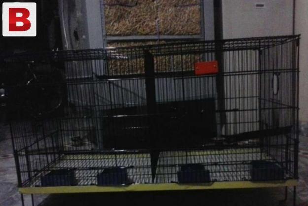 Iron cage 2doliyo wala