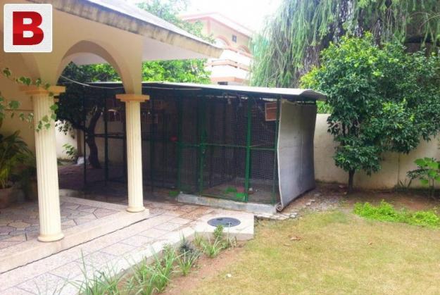 Large size iron cage