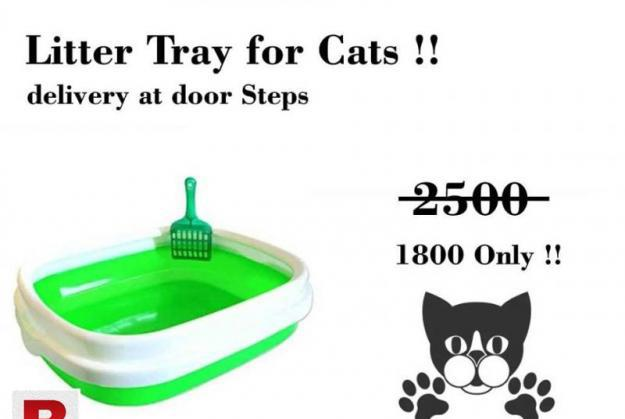 Litter tray for cats