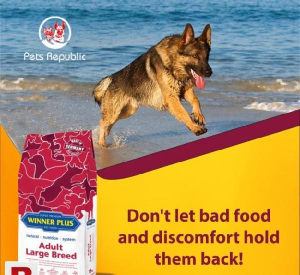 Pet food online pakistan