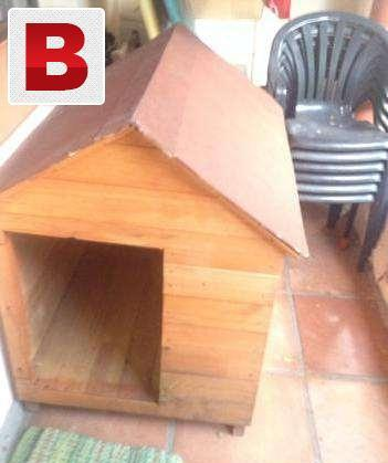 Pet houses available or cats and dogs