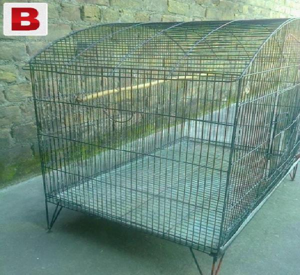 Single portion cage in excellent condition