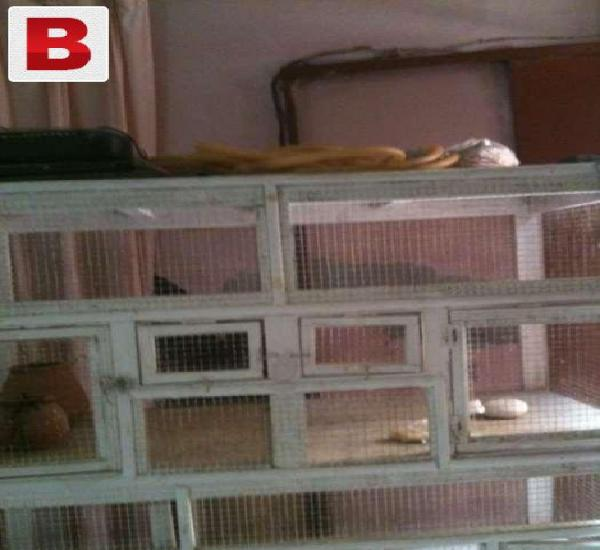 Woden cage in new condition