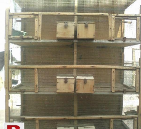 Wooden cage (six portion with attached boxes & two portion)
