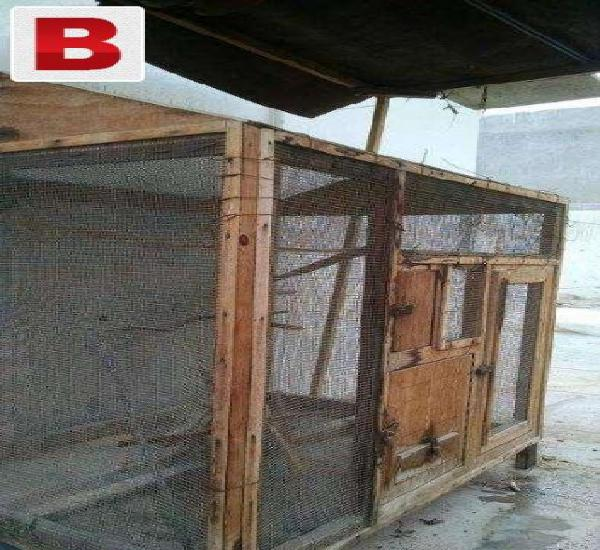 Wooden cage for birds