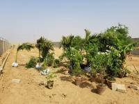 Agriculture farm houses land on installment near asf,