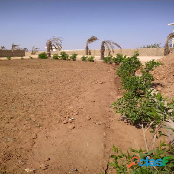 FARM HOUSES FAIRY VALLEY LAND on installments for sale 3