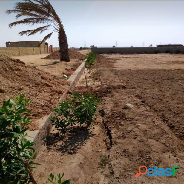 FARM HOUSES FAIRY VALLEY LAND on installments for sale 2