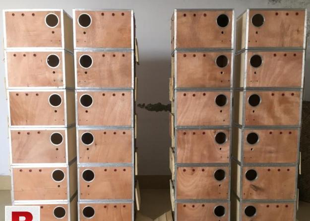 Lovebird used boxes fine quality and cockatiel boxes