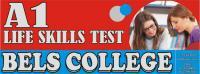 A1 English Test Pass With Guarantee In Bahawalnagar