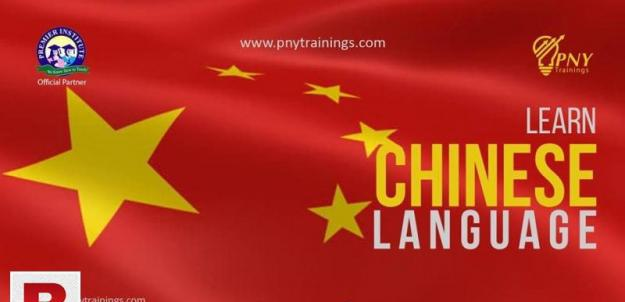Learn chinese language programme