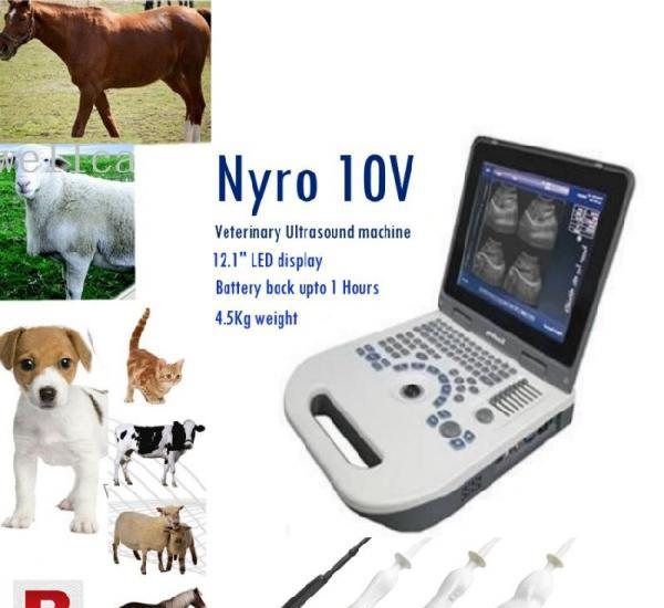 Animals and veterinary ultrasound machines best prices in