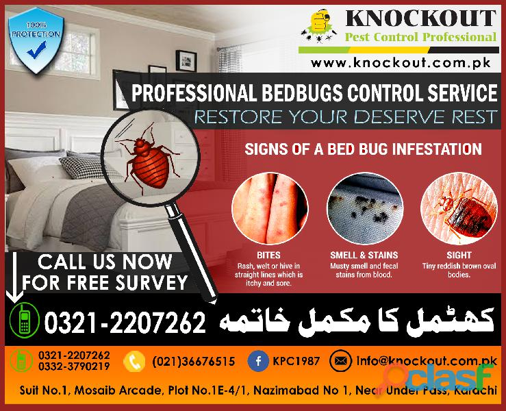 Bed bugs (khatmal) control fumigation/spray   knockout pest control professional