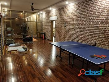 Table Tennis Table Butterfly Style Laminated (Wholesale Prices)