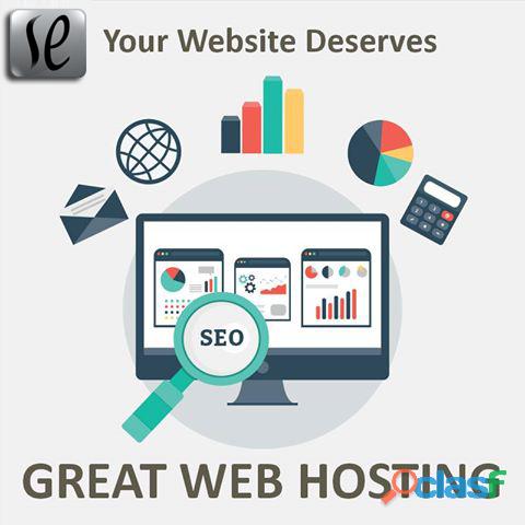 Affordable & best web hosting services | se software technologies |