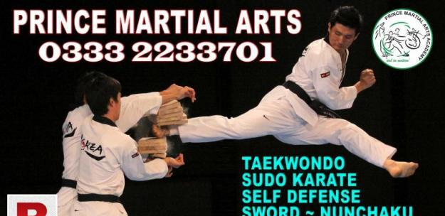 Karate classes taekwondo martial art self defense training
