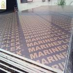 Marine plywood 16mm in pakistan, karachi
