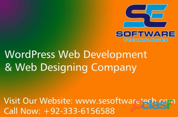Web design agency pakistan | web agency | se software technologies |
