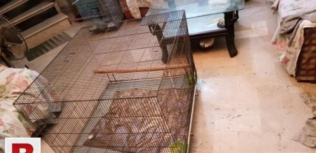 Big steel cage